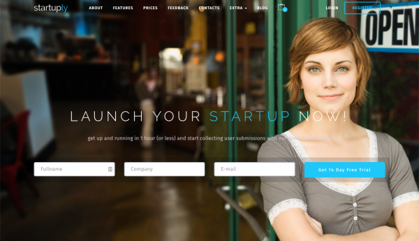 Startup WordPress Theme and 10 top themes for business